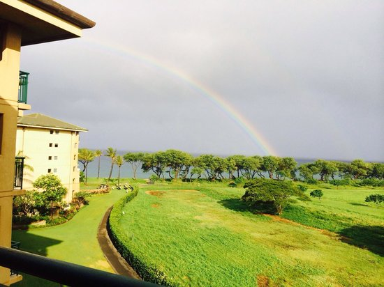 The Westin Kaanapali Ocean Resort Villas: View from balcony of premium ocean view room (not owners).