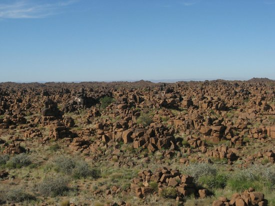 Quivertree Forest and Giant's Playground : All those rocks
