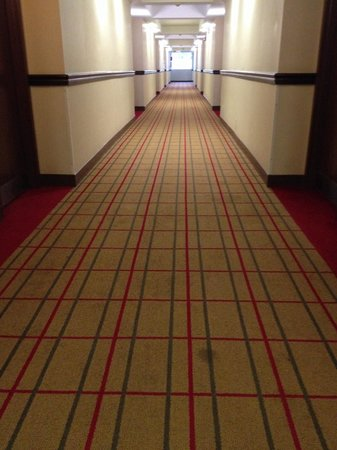 Four Points by Sheraton Asheville Downtown : Hallway carpet. Old, stained, and a bit smelly.