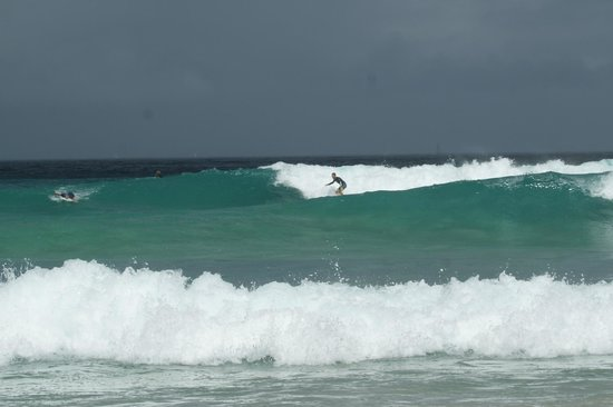Guava Road Apartments: Great Surf