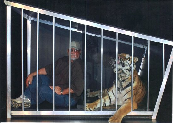 My husband in tiger cage picture of greg frewin theatre niagara falls tripadvisor - Tiger in cage images ...