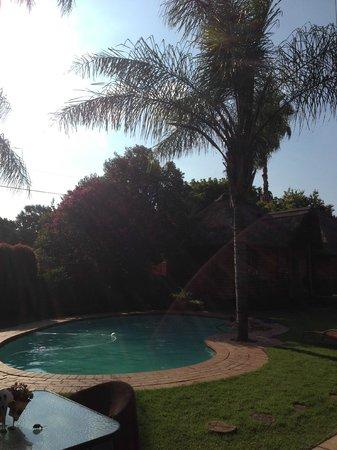 Ciara Lodge: Pool from Kudu cottage verandah