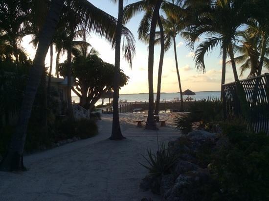 Kona Kai Resort, Gallery & Botanic Garden : Sunset from the pool area.