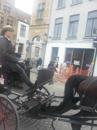 Horse Drawn Carriage Tours: Horse looks miserable