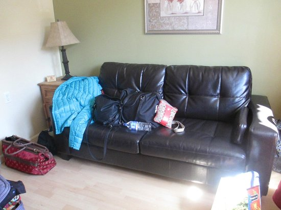 Marina Motel: Sleeper Sofa, sleeps 2