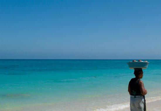 This Is Cartagena : Playa Blanca, Baru