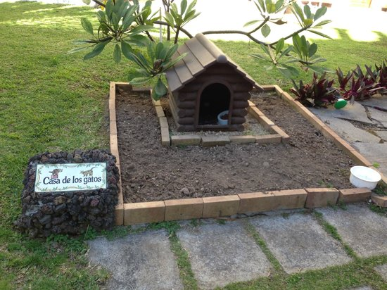 Parque San Antonio: Cats house in the garden of San Antonia