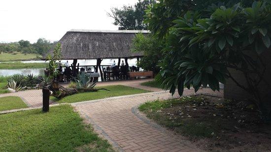 Arathusa Safari Lodge : Outdoor Dining Area