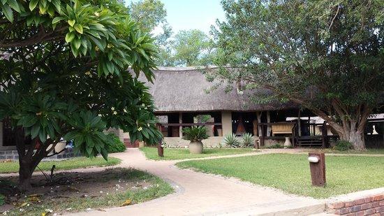 Arathusa Safari Lodge : Lounge and Bar