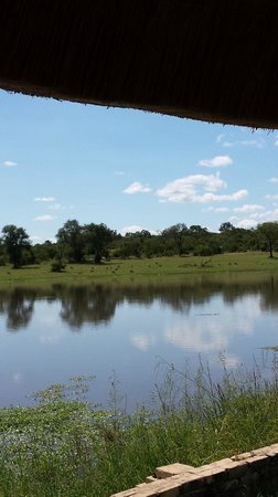 Arathusa Safari Lodge: View of Water Hole from Room Porch