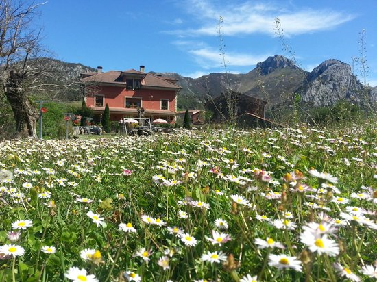 Primavera 2014 Hotel Rural El Torrejon