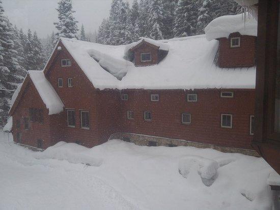 TimberHouse Ski Lodge: Powder Day