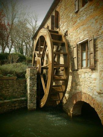 Agriturismo Il Mulino Delle Pile: la ruota