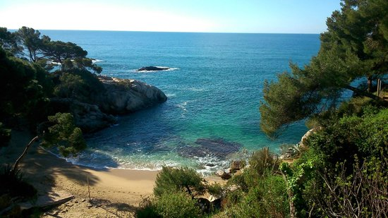 Salles Hotel & Spa Cala del Pi: Private beach
