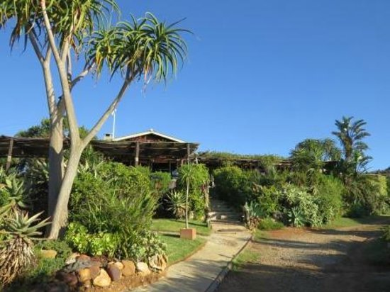 Mudlark River Front Lodge: View Lodge from river's side