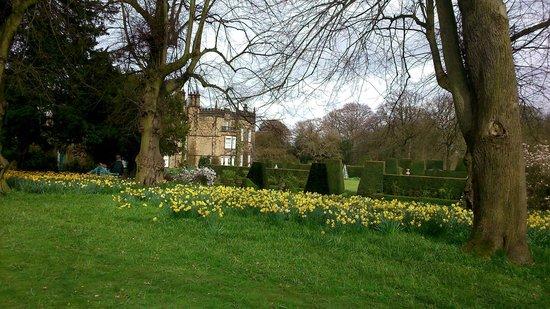 Spring at Renishaw Hall