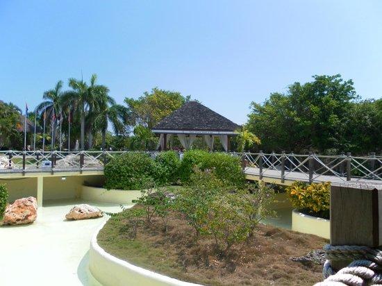 Royalton Hicacos Varadero Resort & Spa: around the resort grounds