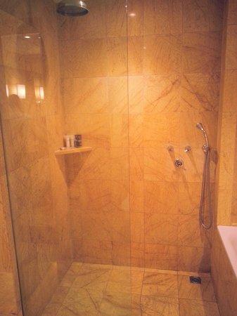 Regent Warsaw Hotel: Shower