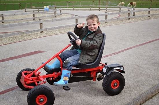 Playdale Farm Park : fun on the go-karts