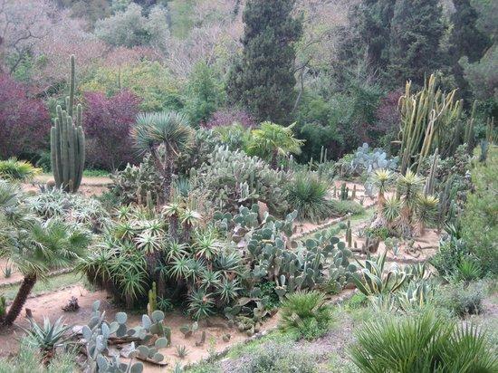 Jardin Santa Clotilde : Ботанический сад