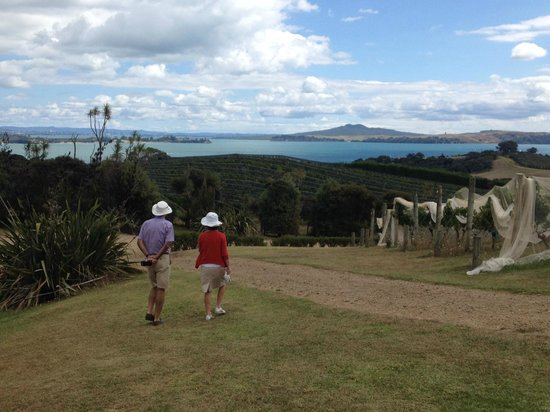 Hauraki Gulf: View back to Auckland from Cable Bay