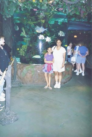 Castaway Kid S Pizza Meal Picture Of Rainforest Cafe
