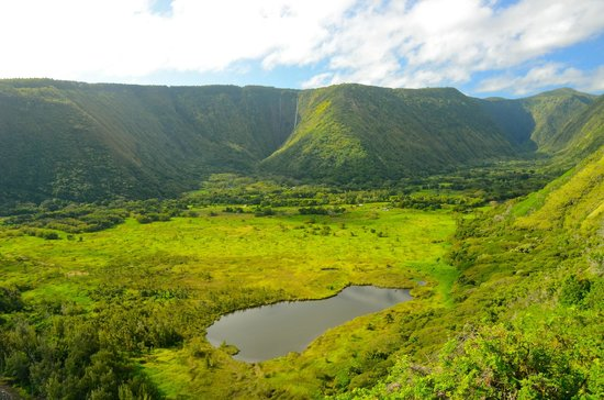 Waipio Rim: Waipio Valley from the Z trail