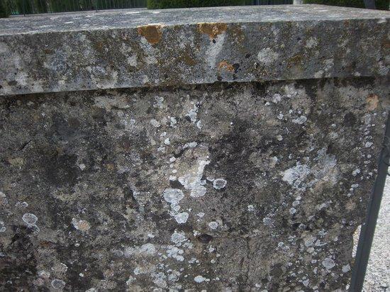 MAUSOLEO DEI 40 MARTIRI: il muro della rappresaglia