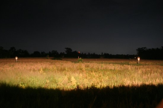 The Chedi Club Tanah Gajah, Ubud, Bali – a GHM hotel: The Rice field at dark