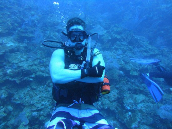 Paradise Scuba and Snorkeling Center: Ico