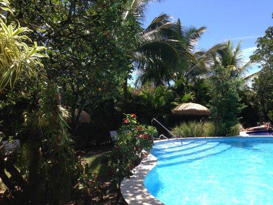 Pousada Casa do Forte : vista da piscina