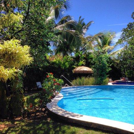 Pousada Casa do Forte : outra vista da piscina