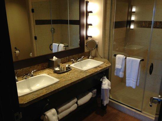 Twin Arrows Navajo Casino Resort : Bathroom