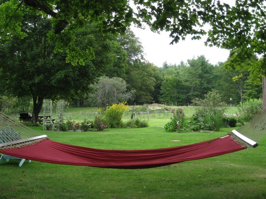 Maple House Bed & Breakfast: Our hammock awaits you !