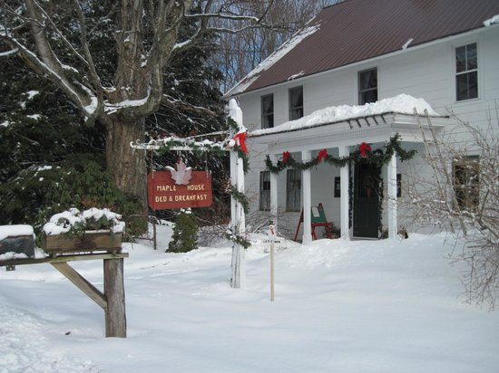 Maple House Bed & Breakfast: X-c trails start at the back door.  Ski from here to Canada!!