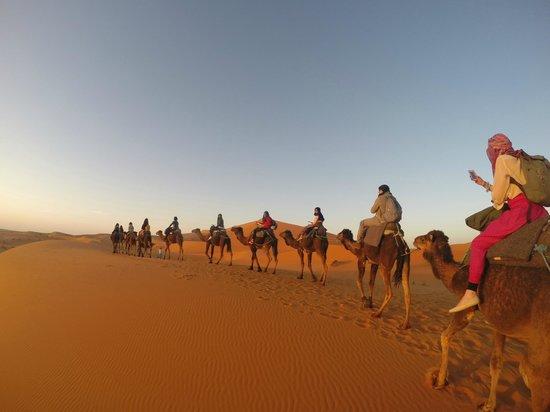 Morocco Sahara 4x4 - Day Tours : CAMINATA EN CAMELLO