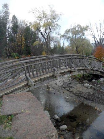 Edwards Gardens: Ponte sobre o córrego
