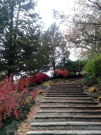 Edwards Gardens: Escada de Pedras