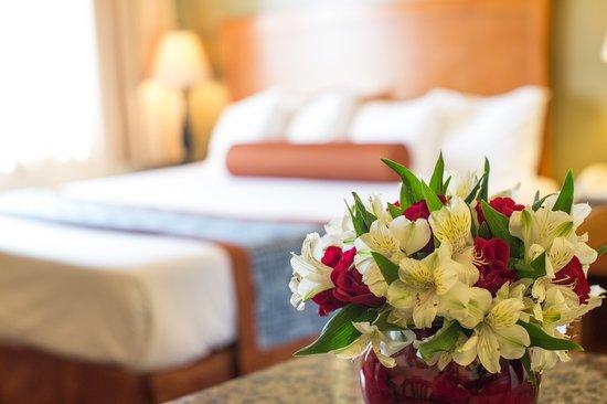 Beachwalker Inn & Suites: Guest Room1
