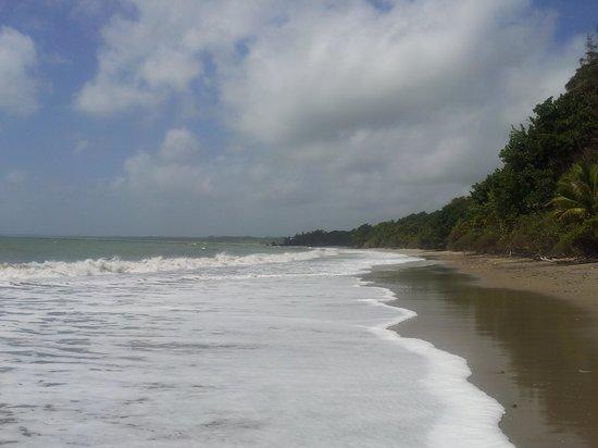 Playa del Este Resort: The view along beach infront of resort