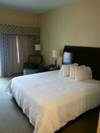 Hilton Garden Inn South Padre Island: Bedroom