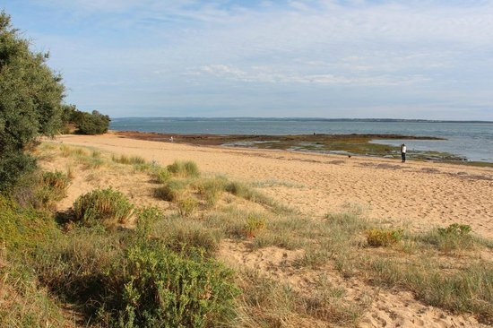 Cowes Caravan Park: À 5m du site 184, accès à la plage