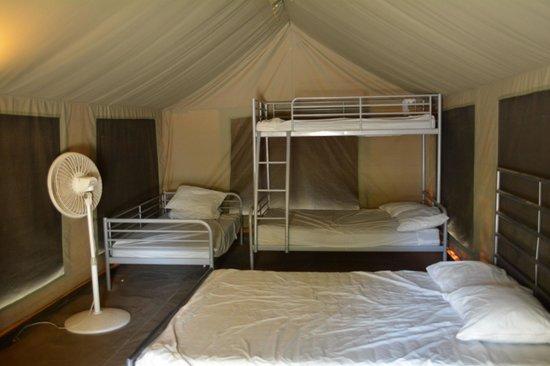 Lake Isabella / Kern River KOA : Inside Deluxe Tent