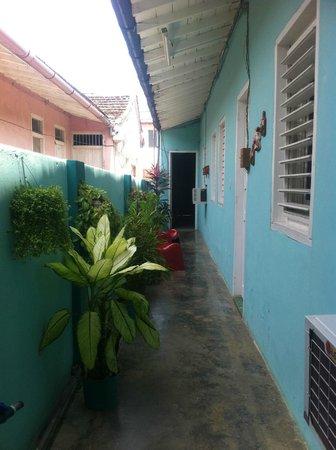 La Casa de Tata : Outdoor, Fauna