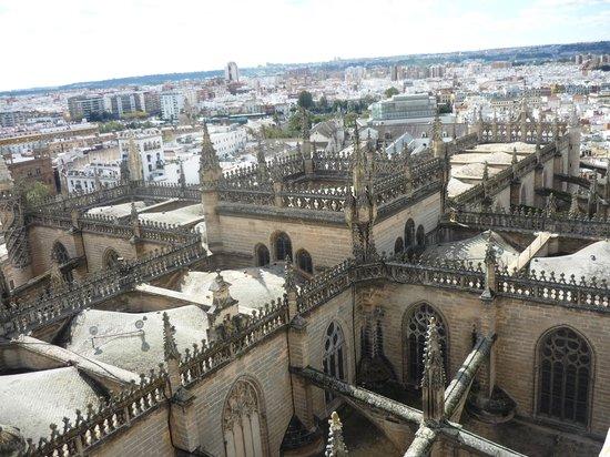 Torre Giralda: Hermosa Sevilla