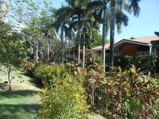 Occidental Tamarindo: Resort Grounds