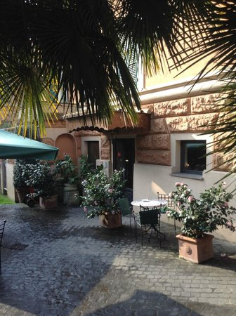 Hotel Aventino: Pink and white Camelias were in bloom