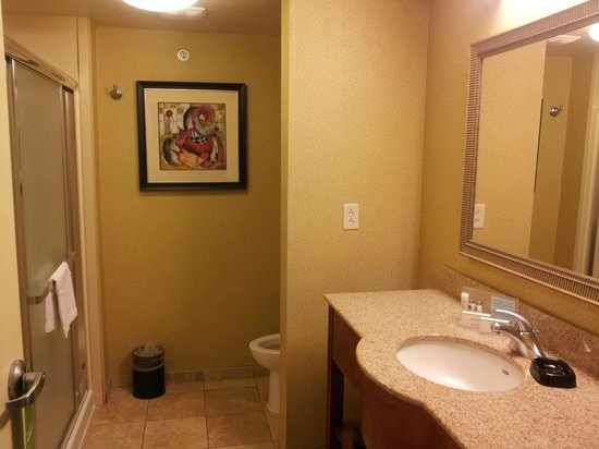 Hampton Inn & Suites Moline-Quad City International Airport: The restroom with a standup shower and recessed shelves