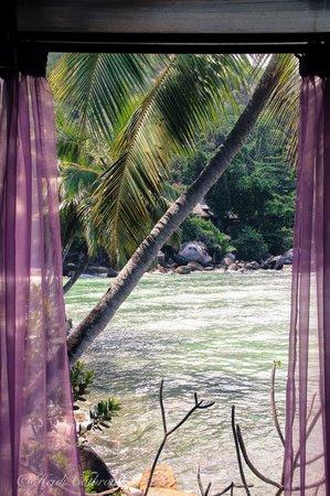 Hilton Seychelles Northolme Resort & Spa: spa views