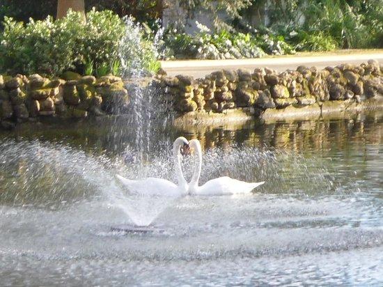Parc de María Luisa : Bello
